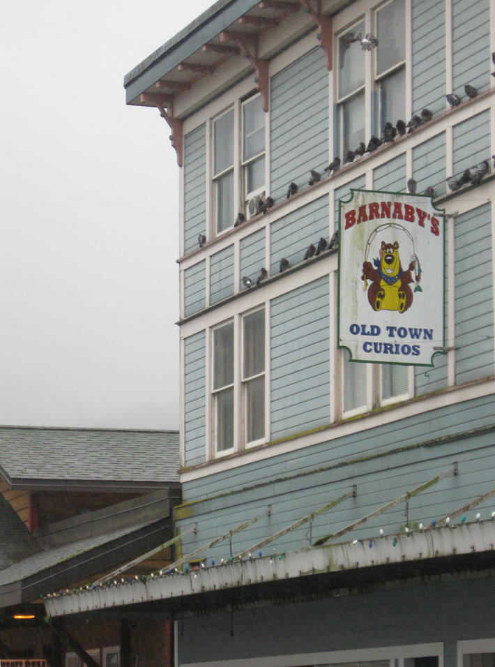 Ketchikan gift shop sign with pigeons