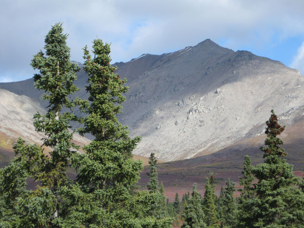 gray, rocky mountains in Denali National Park